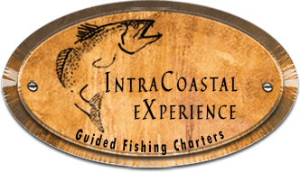 IntraCoastal Experience logo