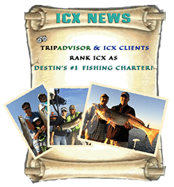 Destin's #1 Fishing Charter on TripAdvisor