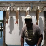 Nice Rack of 22 through 24 inch Redfish along with Speckled Trout.
