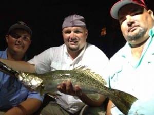 Destin Inshore Fishing Speckled Trout