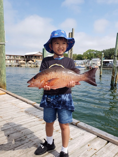 Mangrove Snapper season in Destin FL